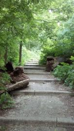 Stairs in Inwood Hill Park