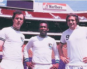 Three Cosmos Greats